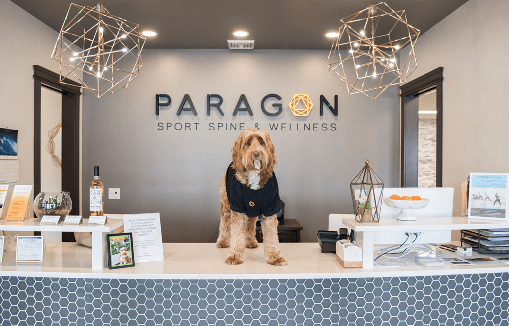 paragon-sport-spine-and-wellness-front-desk