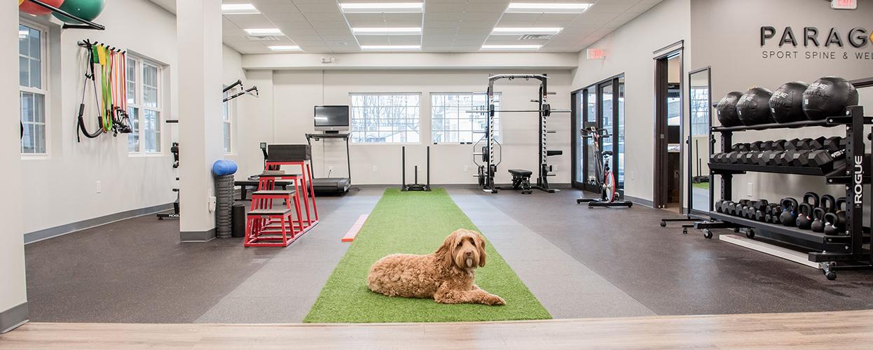 paragon-sport-spine-wellness-facility2